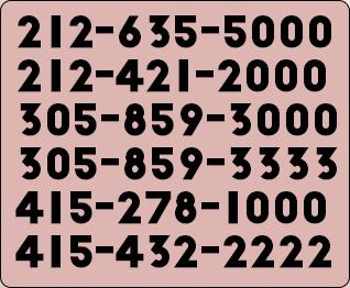 memorable local numbers